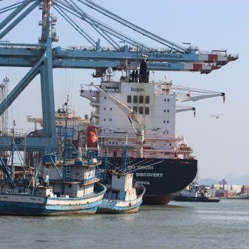 Porto de Itajaí registra crescimento de 10% em cargas movimentadas no primeiro semestre de 2021